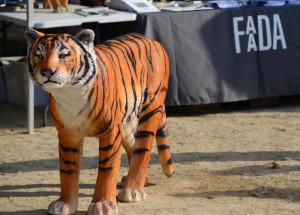 Evento Día Mundial del Tigre